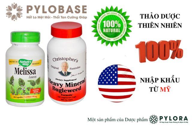 Bộ đôi thảo dược PyLoBase