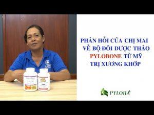 Bộ đôi dược thảo PyLoBone được nhiều khách hàng đánh giá cao