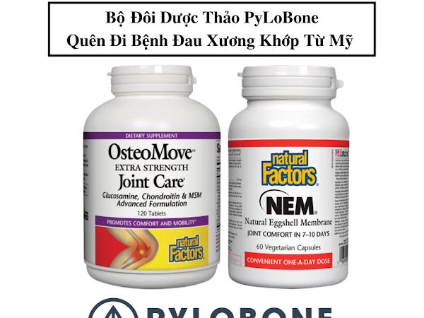 PyLoBone khắc phục nhanh các chứng đau xương khớp