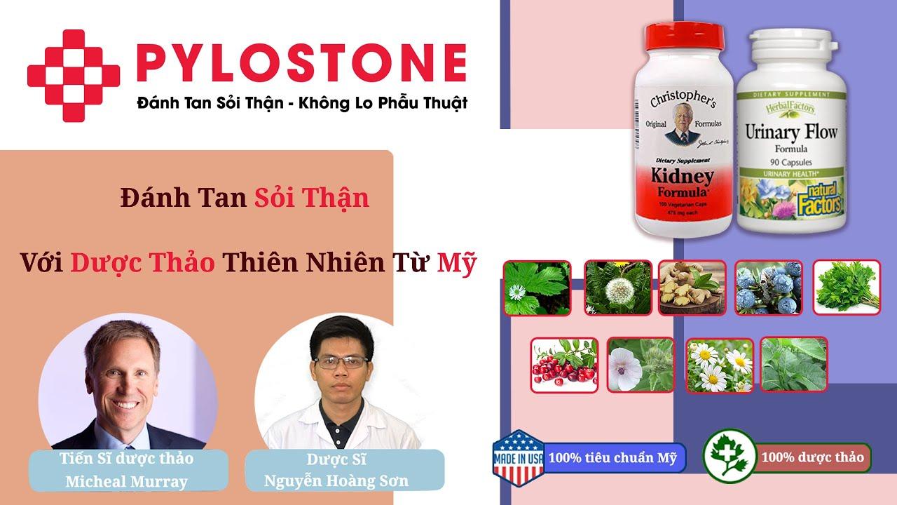 Bộ đôi dược thảo PyLoStone từ Mỹ