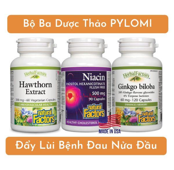Bộ ba dược thảo PyLoMi đẩy lùi bệnh đau nửa đầu