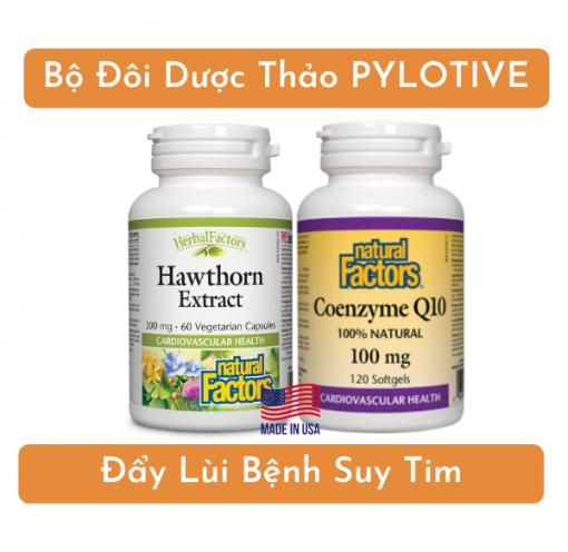 Bộ đôi dược thảo PyLoTive giúp chú Độ hết suy tim