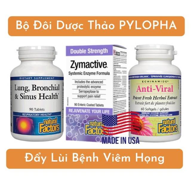 Bộ ba dược liệu PyLoPha đẩy lùi viêm họng